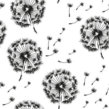 Le pissenlit et les graines de soufflage dans le pattern du vent, vecteur noir et blanc fond
