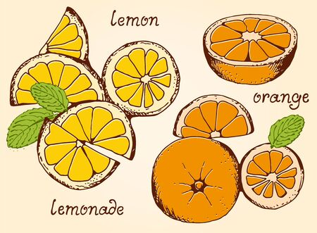 beige background: Lemonade ingredients vector set, summer lemons and oranges set on beige background