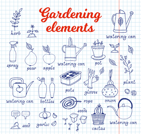 Gardening, horticulture vector set, equipment and tools, vegetables and plants on notebook background with text and names