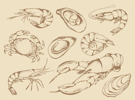 Seafood vector set, food vector collection in sketch style isolated on beige background: lobster, crab, shrimps, oysters, mussels