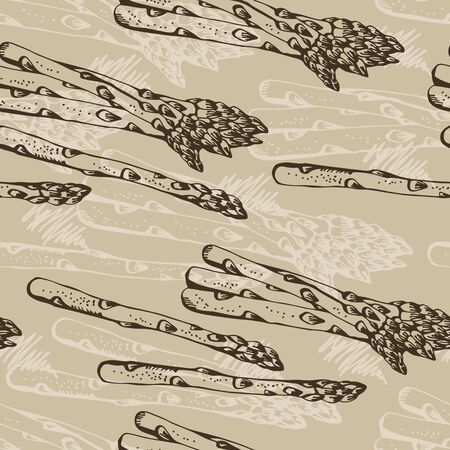 Asparagus vector seamless pattern, hand drawn vegetable background Vetores