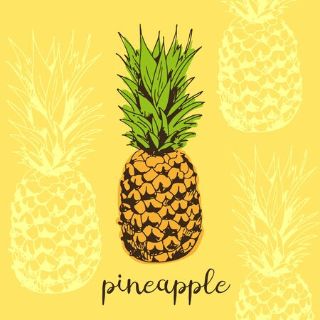 Pineapple vector illustration, tropical background