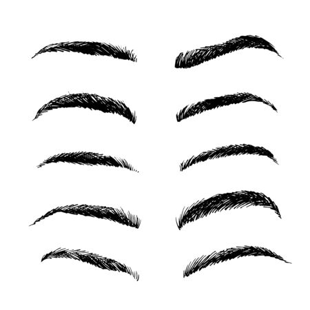 Eyebrows shapes vector set, sketch collection isolated on white background