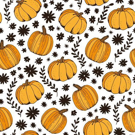 Pumpkin color vector seamless pattern, hand drawn squash sketch isolated on white background