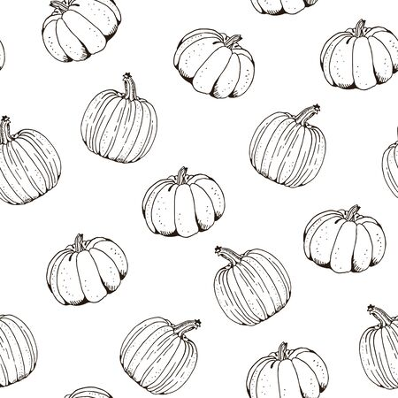 Pumpkin vector seamless pattern, hand drawn squash sketch isolated on white background