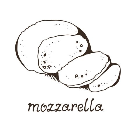 Cheese mozzarella hand drawn vector illustration, isolated on white background with hand drawn text