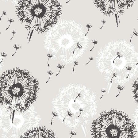 Dandelion with flying seeds vector seamless background, flower illustration isolated on white background