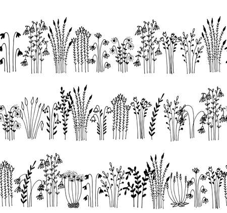 Herbs and flowers seamless vector border, floral pattern isolated on white background