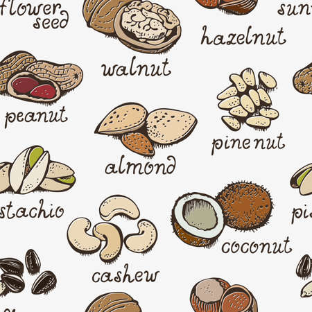 Nuts set vector seamless pattern, various nuts hand drawn background