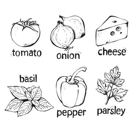 Vector set of ingredients for pizza, tomatoes, cheese, pepper, basil, onion, shrimp isolated on a white background