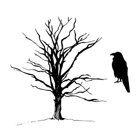 Tree and bird raven silhouette, hand drawn vector sketch, isolated on white background