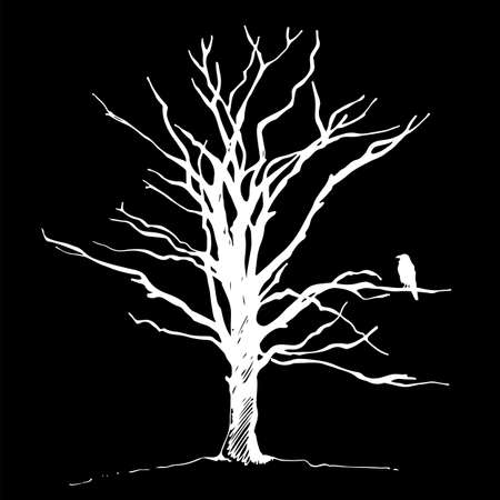 Tree and bird raven silhouette, hand drawn vector sketch, isolated on black background Illustration