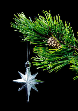 silver star ,pines of the branch on dark background,toy cristmas