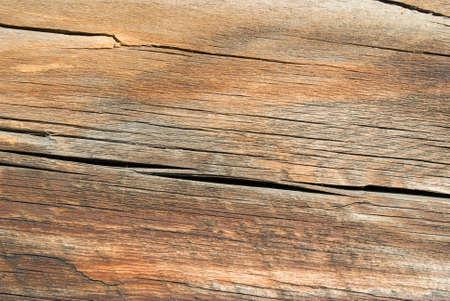 sawed: Wood texture background,old log