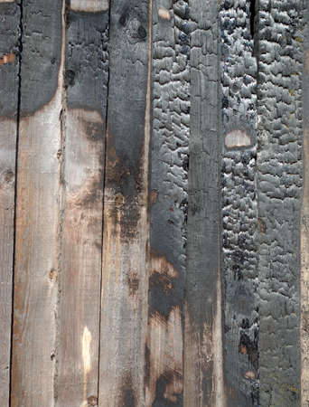 charred log background texture.been partially burnt boards