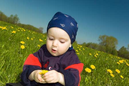 small boy studies dandelion. beautiful year meadow