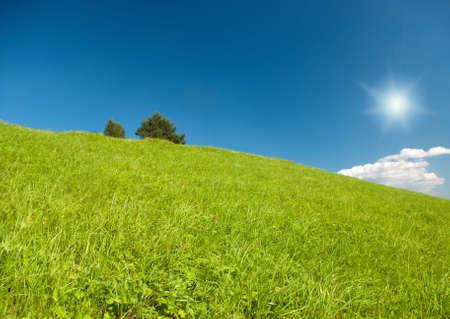 Year landscape,green hill,emerald herb, blue sky