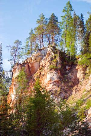 breakaway: beautiful s with pine early in the morning.mountain breakaway Stock Photo