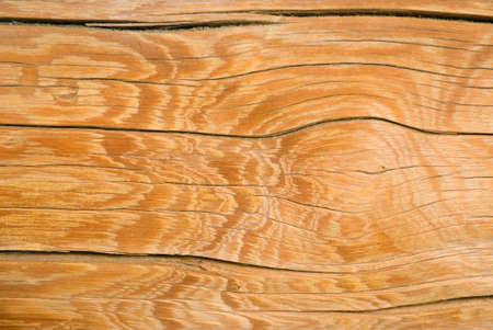 sawed: Wood texture background,old log.Wooden gnarl