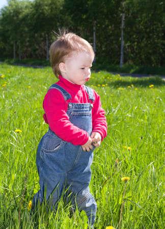 considers: little girl one on meadow considers dandelion.small girl