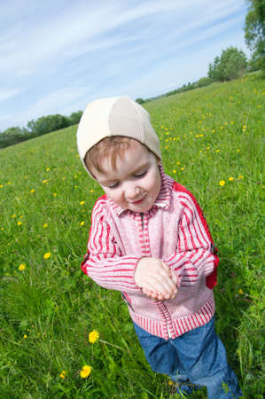 boy and  ladybird  on meadow with dandelion photo