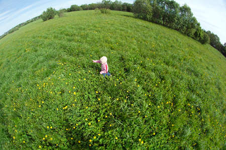 small boy on meadow with dandelion photo