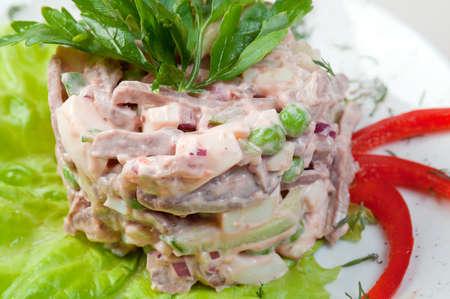 Ensalada de carne en el plato blanco sobre blanco Foto de archivo - 9852957