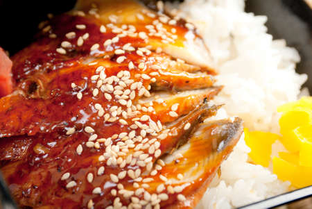 broiled eel on rice, unagi. japanese unagi cuisine photo