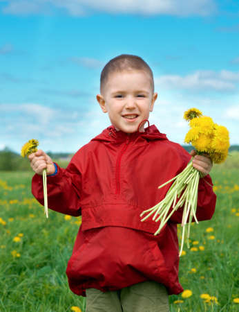 boy searches for bug in herb on meadow with dandelion photo