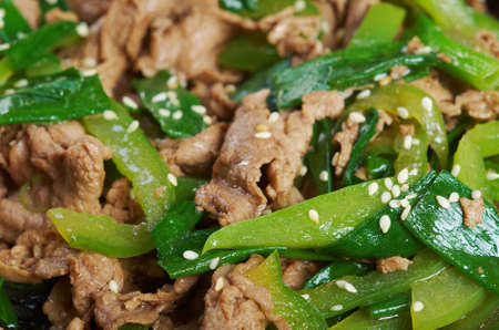 Chinese dish -pork  with vegetables close-up  photo