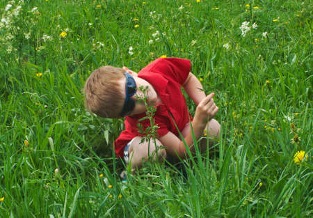 small boy on meadow photo
