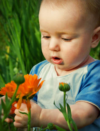 child studies flowerses,small boy,cognition of the world