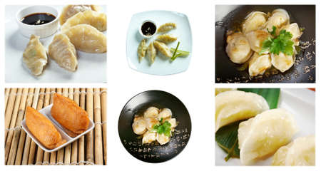 Food set of different chinese dumpling cuisine photo