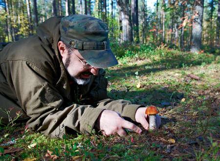 ccloseup: man utting edible mushroom knife in  forest Stock Photo