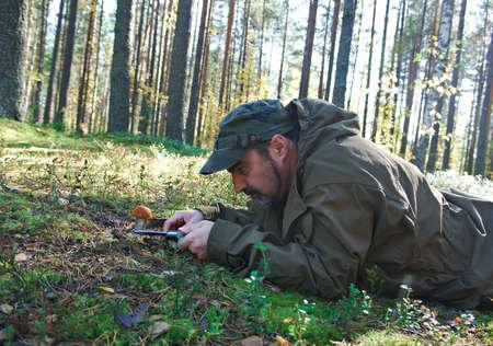 ccloseup: man cutting edible mushroom using knife in forest Stock Photo