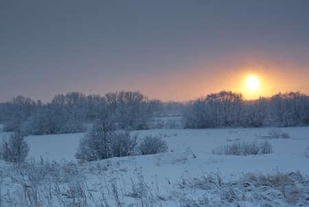 frozenned: snowfall .Winter landscape.Winter beauty scene.