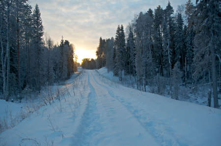 frozenned: Winter landscape.snow-covered forest road