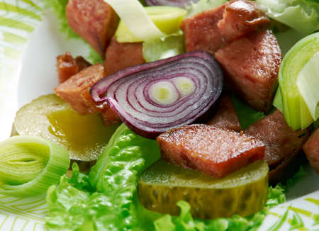 german sausage: Schwabischer Wurstsalat - German sausage salad. tart sausage salad prepared with distilled white vinegar, oil and onions. traditional snack in southern Germany, Alsace, Switzerland and Austria.
