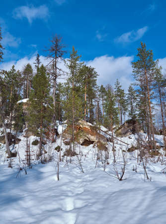 sudetes: Formations caused by karst  with winter taiga forest. Arhangelsk region. Russia Stock Photo