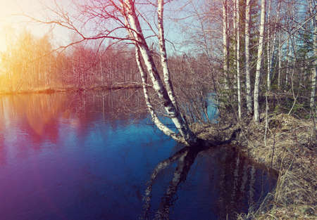 Russian landscape.Spring flooding on the river  Arkhangelsk region