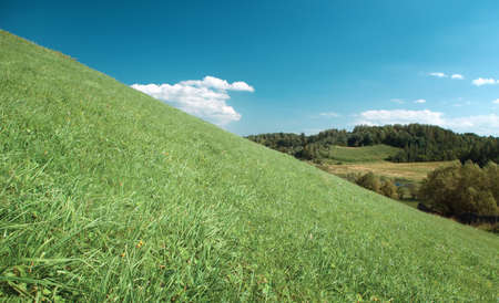 pastoral: Year landscape,green hill,emerald herb, blue sky