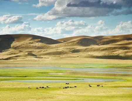 Mongol Els sand dunes of  lake Durgen Nuur Stockfoto