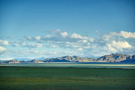 Mongolia. Sands Mongol Els dunes . Herds graze in the spring green valley
