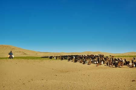 Sands Mongol Els, Mongolian shepherd on a horse. Nomad