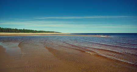 White Sea, Summer Coast , vicinity Nyonoksa ,  Russia .Sandy shore of the south coast