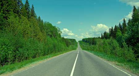 road in Russian forest. Arhangelsk region