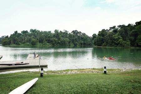 Macritchie Reservoir,Singapore Banco de Imagens