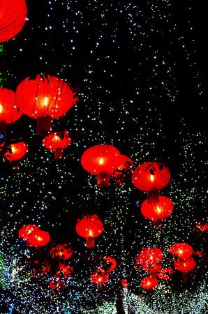 multicolor lantern: Lanterns hanging on a tree