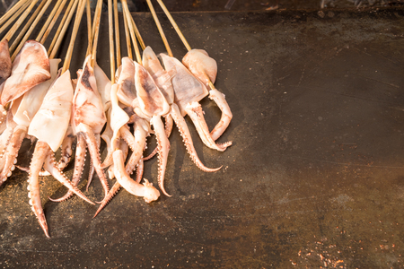 gridiron: Grilled squid on gridiron,Delicious barbecue seafood. Stock Photo