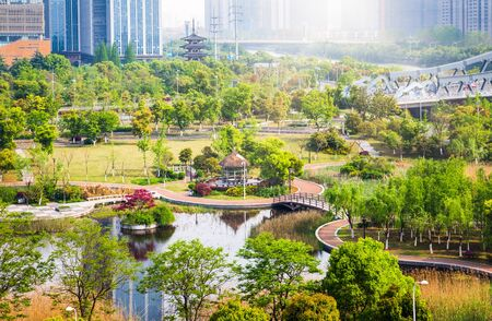 Open Urban Green Park Space in front of Residential Buildings Stock Photo - 56165940